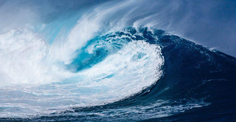 Ambiente, 8 giugno evento streaming Marevivo per giornata mondiale Oceani