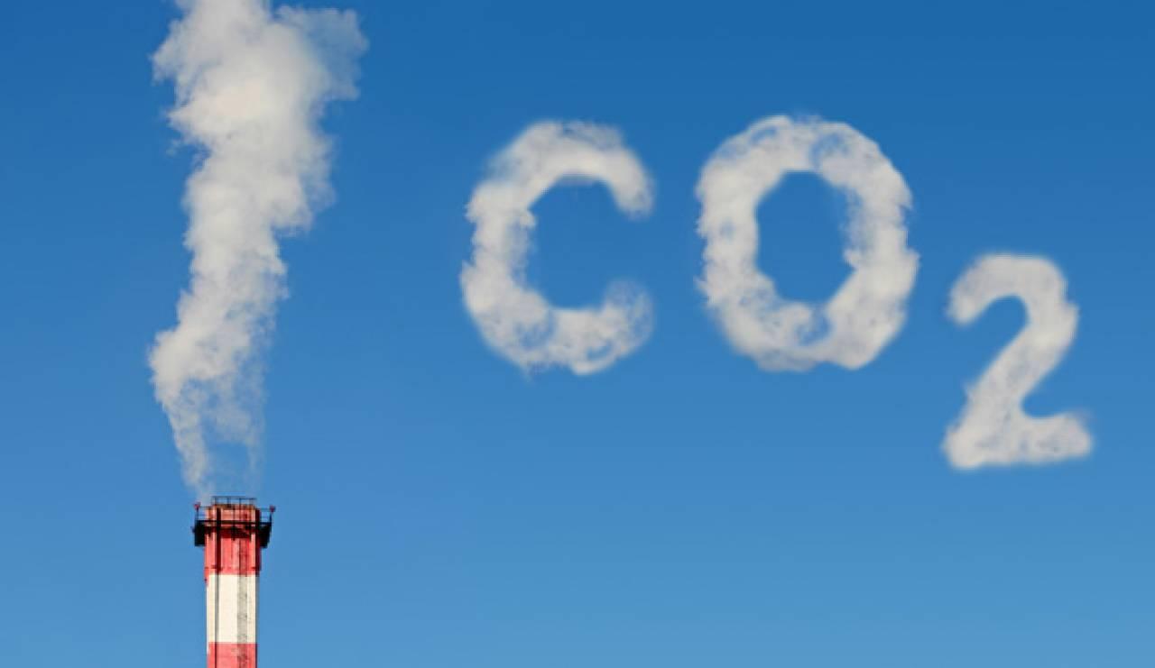 Clima: studio Greenpeace, dagli allevamenti intesivi più gas serra delle auto