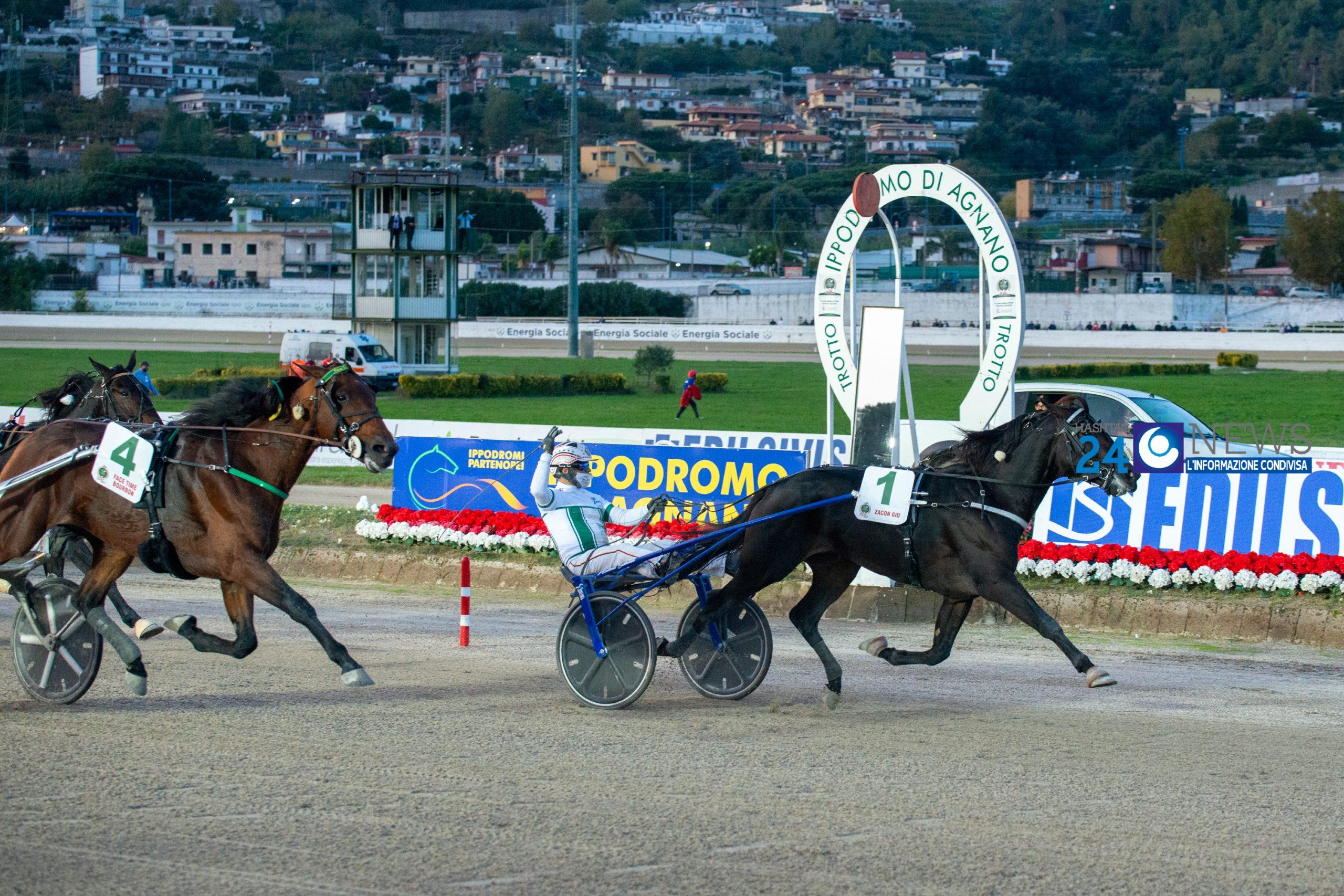 71° Gran Premio Lotteria di Agnano,  la rivincita di Zacon Gio.