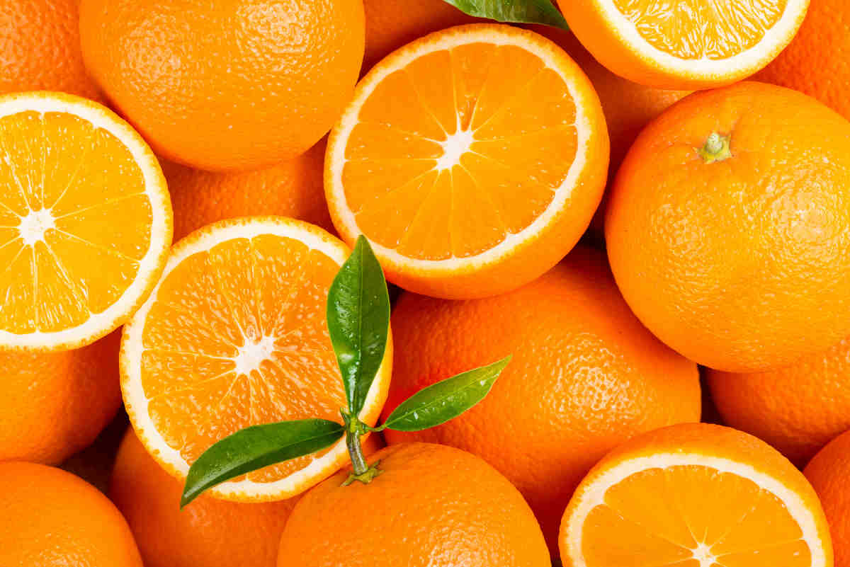 Ambiente: metano da arance amare, l'energia verde di Siviglia